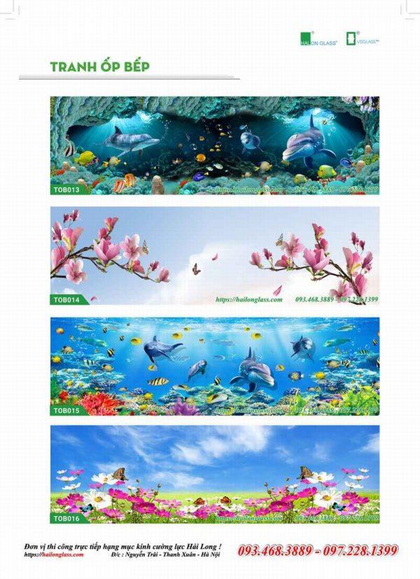 Kính Ốp Bếp 3D -In truyền nhiệt Hải Long - Việt Nhật
